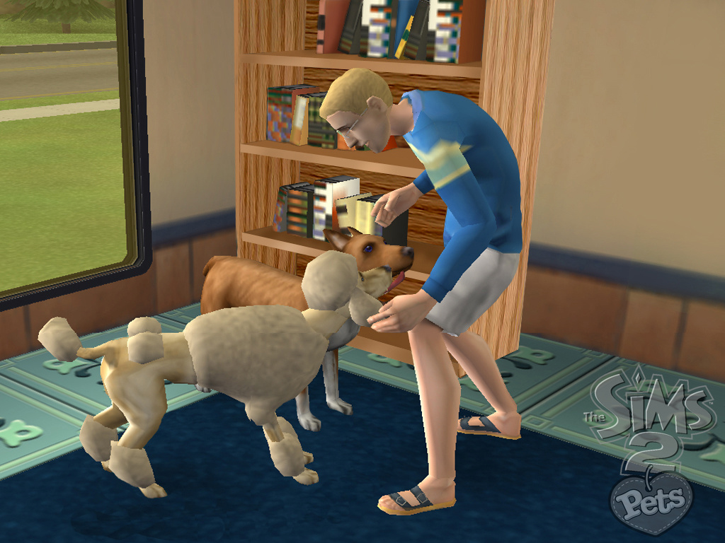 The Sims 2 Pets Wii News Reviews Trailer Amp Screenshots