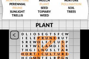 Word Search by POWGI Screenshot