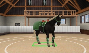 Best Friends - My Horse 3D Review - Screenshot 2 of 3