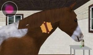 Best Friends - My Horse 3D Review - Screenshot 3 of 3