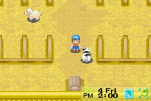 Harvest Moon: Friends of Mineral Town Screenshot