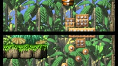 DK: Jungle Climber Screenshot
