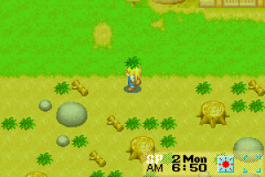 Harvest Moon: More Friends of Mineral Town Review - Screenshot 1 of 3