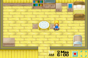Harvest Moon: More Friends of Mineral Town Review - Screenshot 3 of 3
