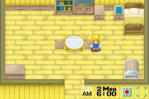 Harvest Moon: More Friends of Mineral Town Screenshot