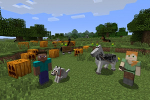 Minecraft: Wii U Edition Screenshot