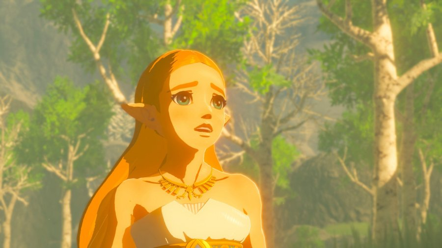The Legend of Zelda: Breath of the Wild Review - Screenshot 4 of 11