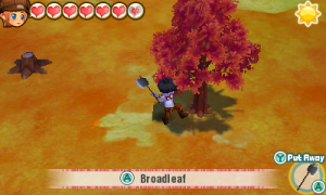 STORY of SEASONS Trio of Towns - Fall Tree