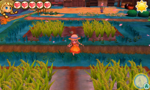 STORY of SEASONS Trio of Towns - Rice Paddies