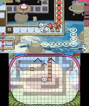 Go! Go! Kokopolo 3D Review - Screenshot 3 of 3