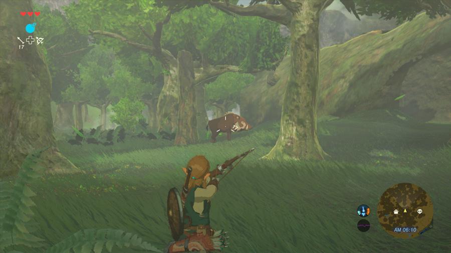 The Legend of Zelda: Breath of the Wild Review - Screenshot 1 of 5