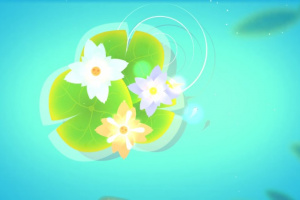 Koi DX Screenshot