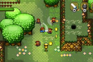 Blossom Tales: The Sleeping King Screenshot