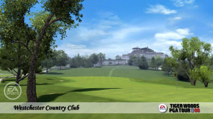 Tiger Woods PGA Tour 08 Review - Screenshot 1 of 3