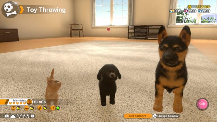 Little Friends: Dogs & Cats Review - Screenshot 1 of 5