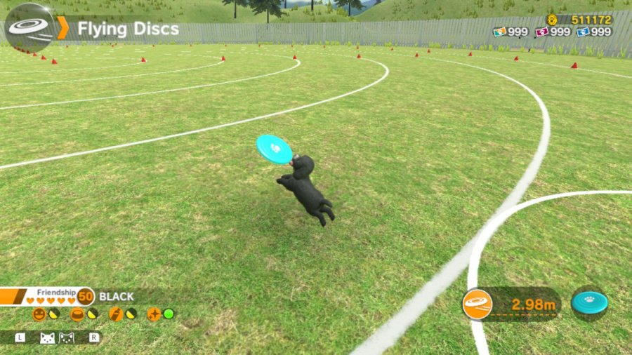 Little Friends: Dogs & Cats Review - Screenshot 2 of 5