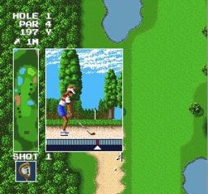 Power Golf Review - Screenshot 2 of 2