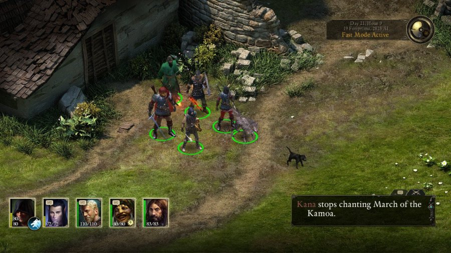 Pillars of Eternity: Complete Edition Review - Screenshot 3 of 7