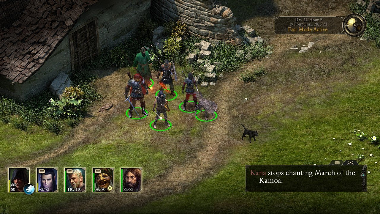 Pillars of Eternity: Complete Edition Review (Switch eShop