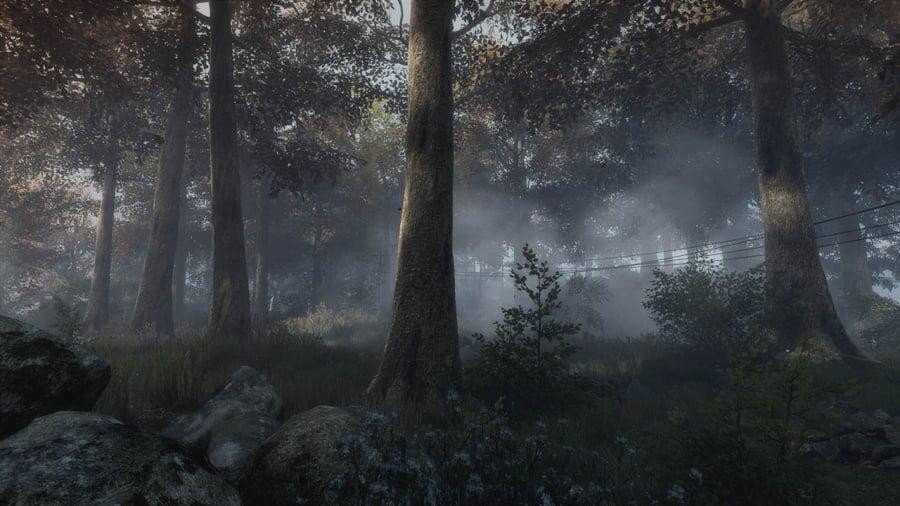 The Vanishing of Ethan Carter Review - Screenshot 1 of 5
