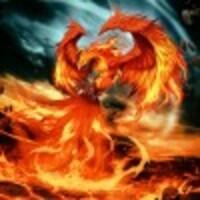 Firebird55