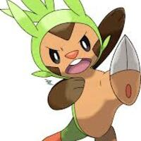 Chespin2013