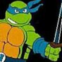 Turtles89